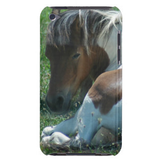 Paint Pony Resting iTouch Case iPod Touch Covers