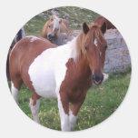 Paint Pony Sticker