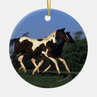 Paint Yearlings Running Christmas Ornament