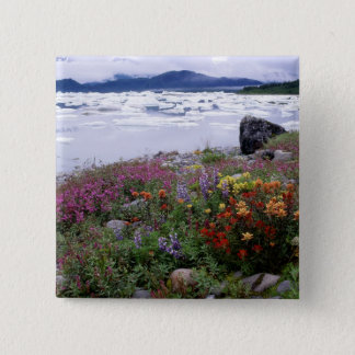 Paintbrush, Lupine, Fireweed. Icebergs Russell 15 Cm Square Badge