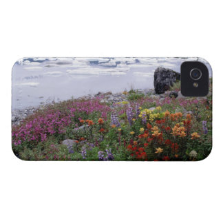 Paintbrush, Lupine, Fireweed. Icebergs Russell Case-Mate iPhone 4 Case