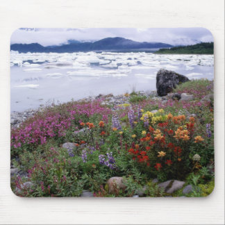 Paintbrush, Lupine, Fireweed. Icebergs Russell Mouse Mat