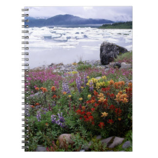 Paintbrush, Lupine, Fireweed. Icebergs Russell Spiral Notebook