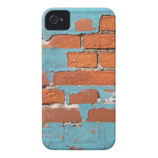 Painted Brick Blackberry Bold Case
