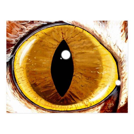 Painted Cat's Eye Postcard
