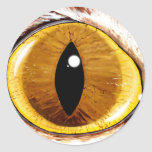 Painted Cat's Eye Round Sticker
