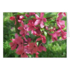 Painted Crabapple Blossoms customisable card