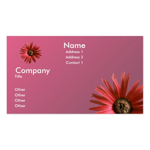Painted Daisy Pack Of Standard Business Cards