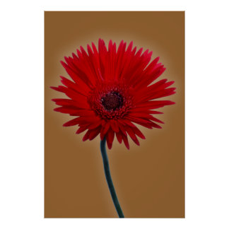 Painted Daisy Poster
