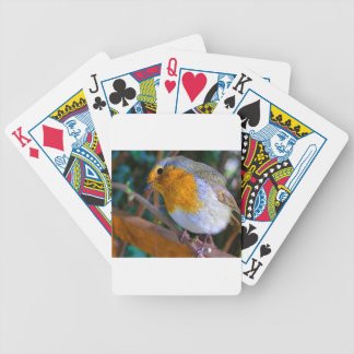 Painted Effect Robin Bicycle Playing Cards