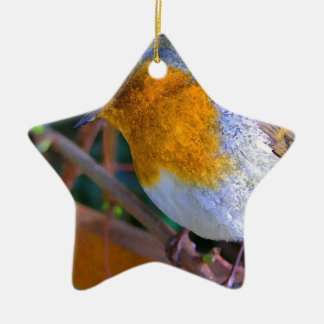 Painted Effect Robin Christmas Ornament