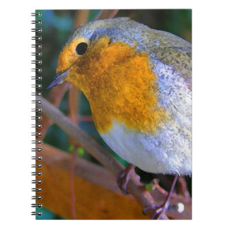 Painted Effect Robin Notebook