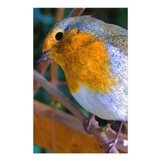 Painted Effect Robin Stationery