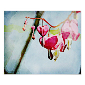 Painted Flowers Bleeding Hearts Poster