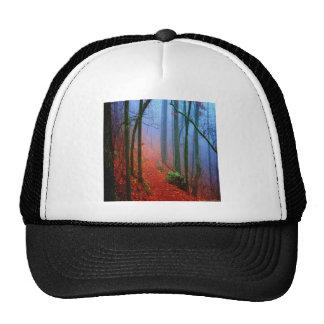 Painted Forest Autumn Blue Fog Cap