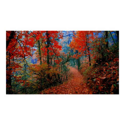 Painted Forest Autumn Flame Watercolor Print