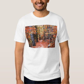 Painted Forest Autumn Trail Watercolor Gifts Shirts