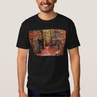 Painted Forest Autumn Trail Watercolor Gifts T Shirts