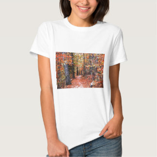 Painted Forest Autumn Trail Watercolor Gifts Tees