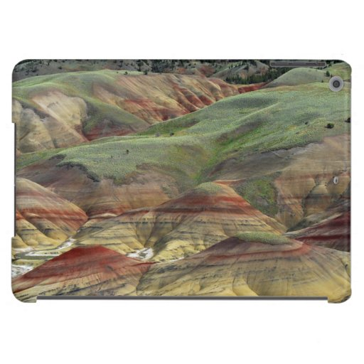 Painted Hills, John Day Fossil Beds, Mitchell iPad Air Case