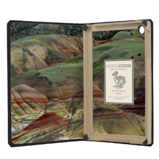 Painted Hills, John Day Fossil Beds, Mitchell iPad Mini Cases