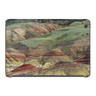 Painted Hills, John Day Fossil Beds, Mitchell iPad Mini Retina Case