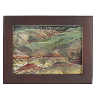 Painted Hills, John Day Fossil Beds, Mitchell Keepsake Box