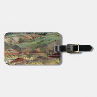 Painted Hills, John Day Fossil Beds, Mitchell Luggage Tag