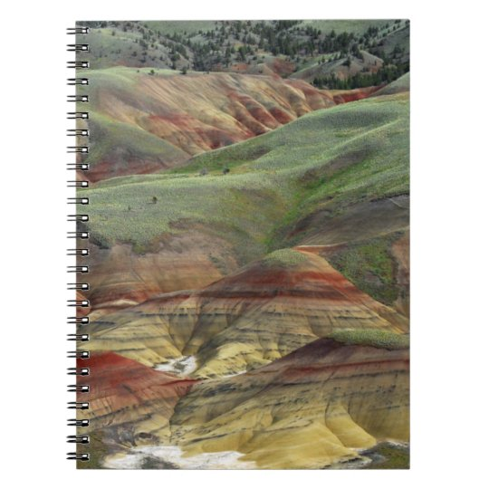 Painted Hills, John Day Fossil Beds, Mitchell Notebooks