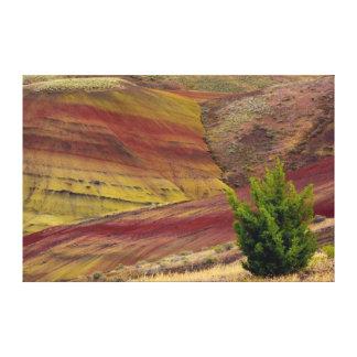 Painted Hills, Mitchell, Oregon, USA Canvas Print