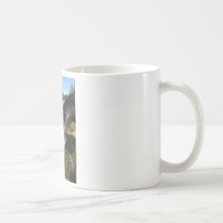 Painted Horse, Eating Queen Ann Lace flower Coffee Mug