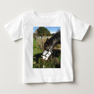 Painted Horse, Eating Queen Ann Lace flower T-shirt