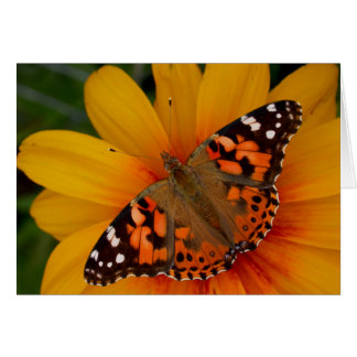 Painted Lady Butterfly Card