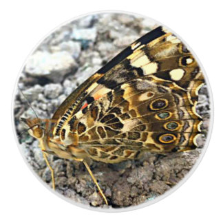 Painted Lady Butterfly Ceramic Knob