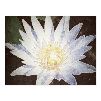 """PAINTED LOTUS"" POSTCARD"