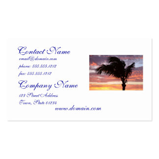 Painted Palm Sunset Business Cards