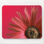 Painted Red Daisy Mousemats