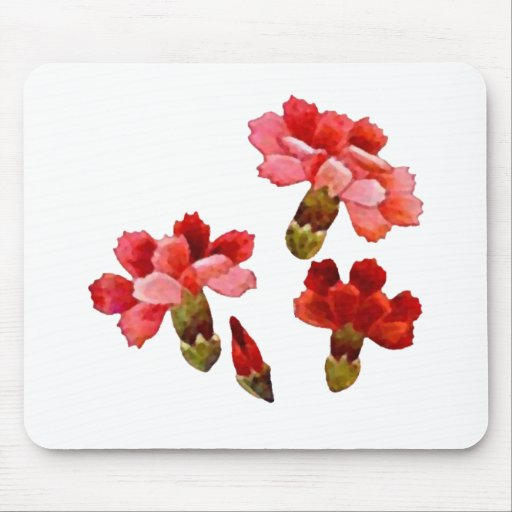 Painted Red & Pink Carnations Mousepads