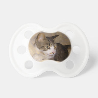 Painted Silk Kitty BooginHead Pacifier