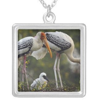Painted Storks & young one at nest,Keoladeo Square Pendant Necklace