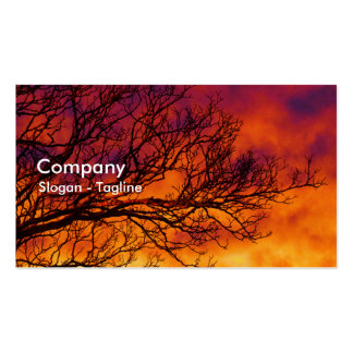 Painted Sunset Pack Of Standard Business Cards