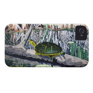 Painted Turtle BlackBerry Bold Case