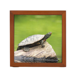 Painted Turtle on a log Desk Organiser