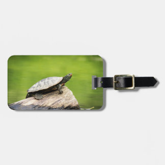 Painted Turtle on a log Luggage Tag