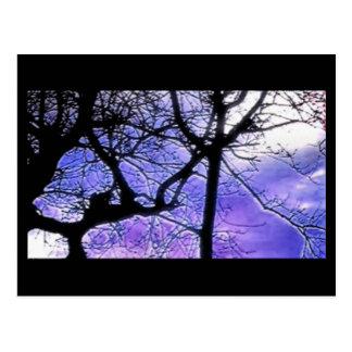 painted twilight tree postcard