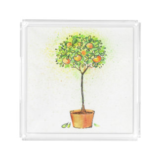 Painted watercolor citrus tree in pot acrylic tray