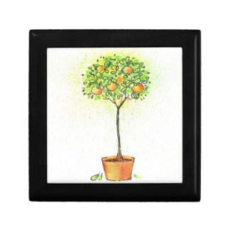 Painted watercolor citrus tree in pot gift box