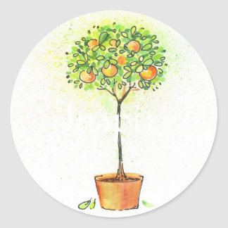 Painted watercolor citrus tree in pot round sticker