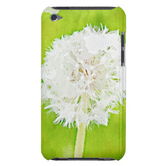 Painted Wish iPod Touch Cases