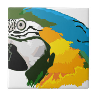 Painted Yellow Blue Macaw Parrot Tile